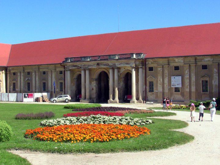 Akvárium Malawi